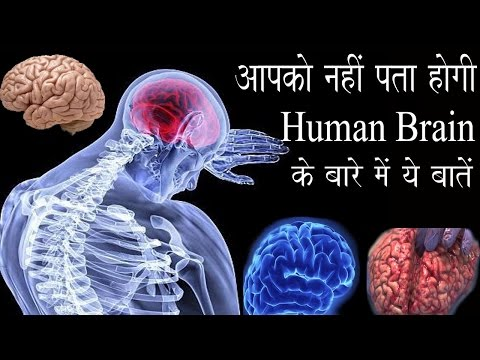 Most Amazing Facts About Human Brain Part 2 , (Hindi)
