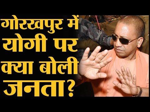 UP Bypolls में BJP, SP और Congress में टक्कर देखने लायक है   Gorakhpur   उपचुनाव   Yogi Adityanath