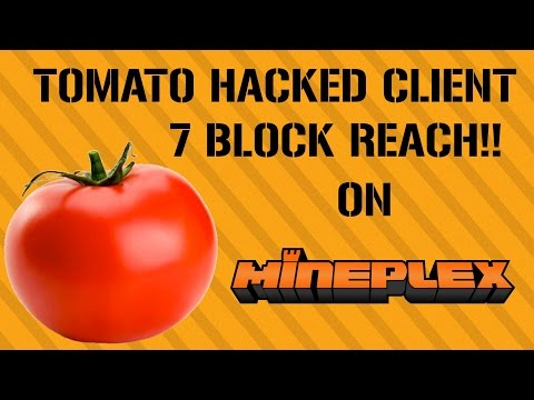 Tomato hacked client 1.8 download