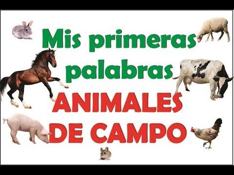 mis-primeras-palabras---04---animales-de-campo