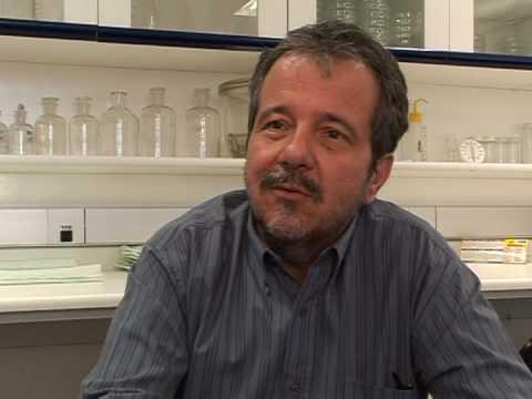 Brazil: a human milk factory