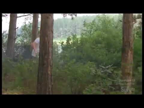 lake placid 3 movie hindi dubbed