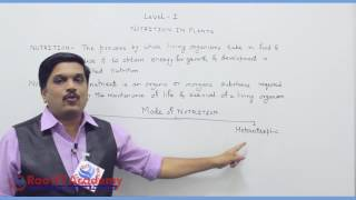 chapter wise Prefoundation Std 7th videos