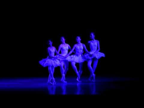 Four little swans - Ballet Special 1