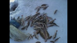 Зимняя рыбалка на Байкале.Начало соревнований.Жестокий контролёр.
