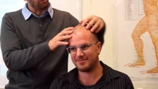 cranial nerves point YNSA workshop in Toronto/ david bomzon