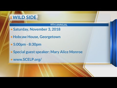 Wild Side celebrates environmental protection and conservation