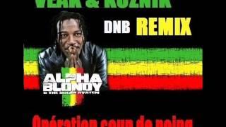 Alpha Blondy - Opération Coup De Poing (Veak and Koznik Remix)