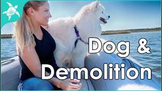 Dog moves onto boat & demolition begins!