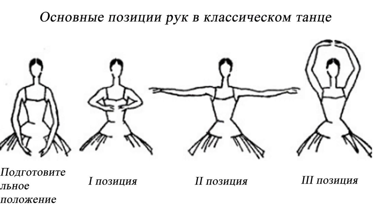 позиции в балете названия с картинками ц нефтекумска разнообразен предложениями