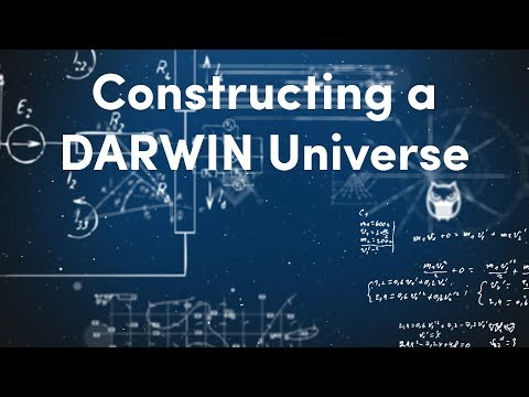 Constructing a DARWIN Universe | Algorithmic Trading & Investing with the DARWIN API