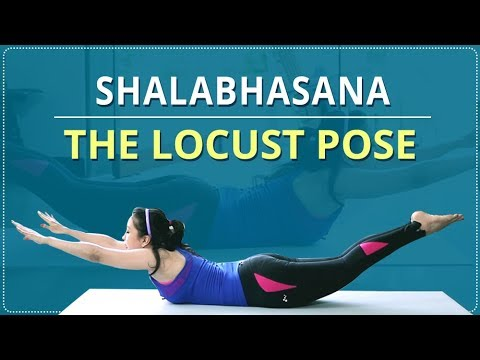 LEARN HOW TO do the LOCUST POSE | SHALABHASANA | Simple Yoga | Yoga For Beginners | Mind Body Soul