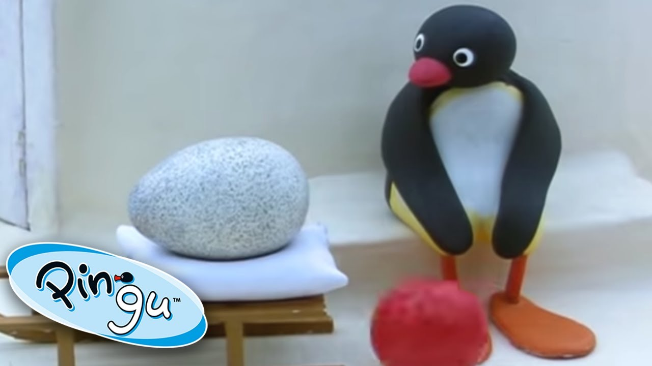 Pingu and the Mix Up! | Pingu Official | Cartoons for Kids