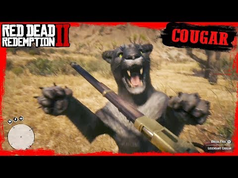 RDR2 Hunting Legendary COUGAR / First Person Cougar Attack Gameplay 🤠🤠🤠
