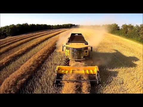 Harvest Denmark  2015