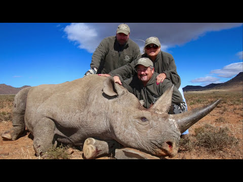 BLACK RHINO ALIVE AND HEALTHY BECAUSE OF HUNTERS