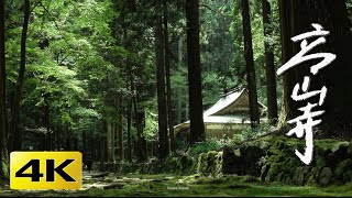 [4K] 高山寺  京都の庭園 Kozan-ji Temple [4K] The Garden of Kyoto Japan