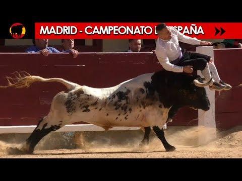 ✅ FINAL DEL CAMPEONATO DE ESPAÑA DE RECORTADORES CON TOROS 2018 - MADRID 07/10/2018