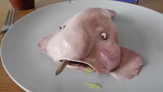 Amazing Unbelievable Creature/Amazon rainforest Tribe/Jungle ke Aadivasi/Amazon Forest Tribe