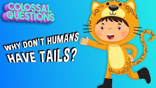 Why Don't People Have Tails? | COLOSSAL QUESTIONS