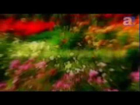 TVアニメ「うみねこのなく頃に」PV第1弾