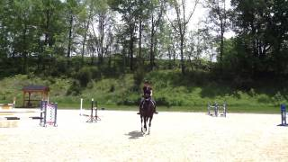 Dressage Lesson with David O