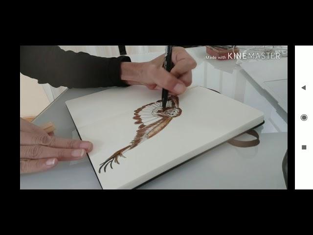 Sketch of Golden Eagle in my moleskine sketchbook