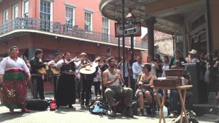 "Tuba Skinny & Los Mariachis on Royal St. - ""Donde Estas Corazon"""