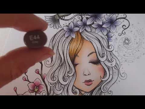 Video Tutorial bruine haren inkleuren met Copic Markers