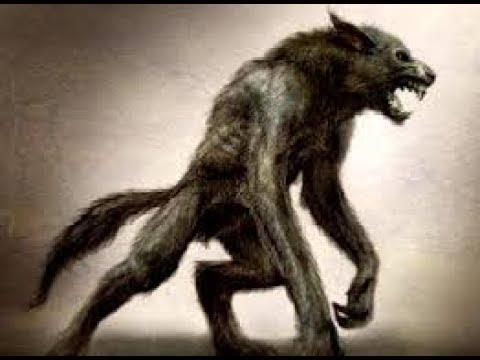 L Origine Du Mythe Loup Garou Documentaire En Francais Paranormal