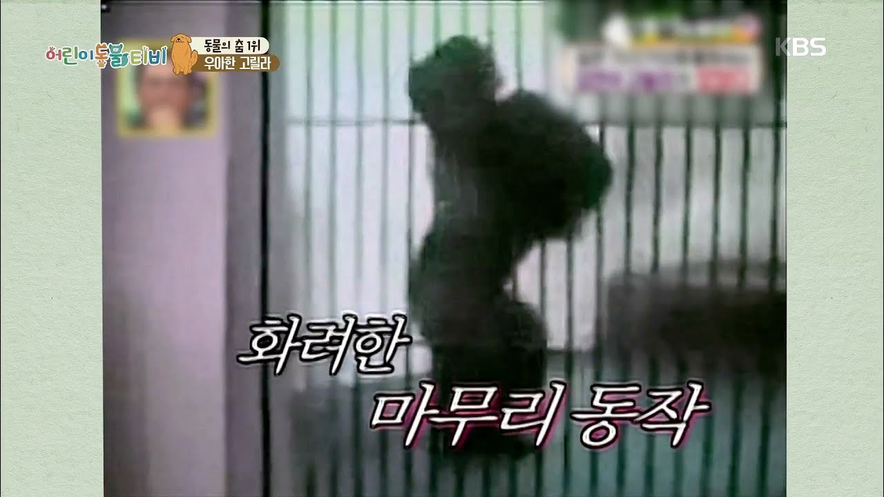 [다섯손가락] 동물의 춤 1위의 주인공은?! [어린이 동물티비]   KBS 210908 방송
