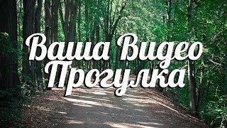видеопрогулка.рф