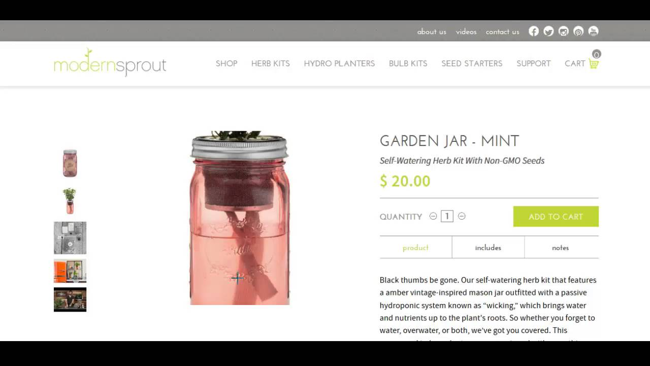 Self Watering Counter Top Garden Jar