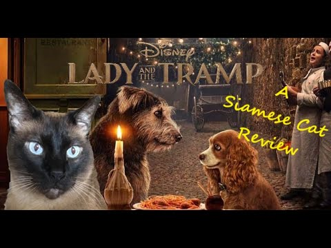 Lady And The Tramp 2019 A Siamese Cat Review Youtube