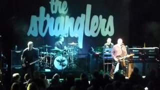 The Stranglers @ Cologne, Bürgerhaus Stollwerck - 17.11.2015 - Toiler On The Sea