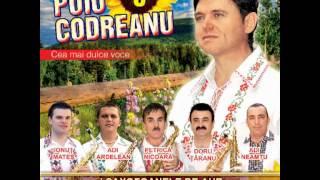 Puiu Codreanu - Iubitoare cum esti tu - 2012