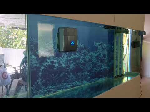 RoboSnail automatic aquarium glass cleaner