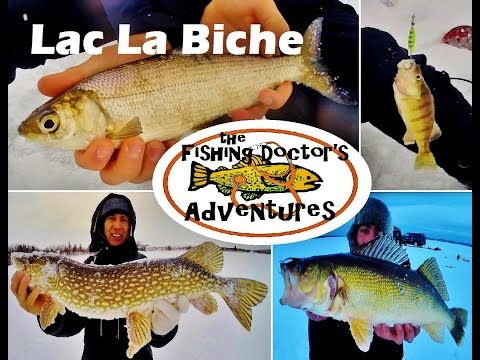 Lac La Biche Lake Family Ice Fishing