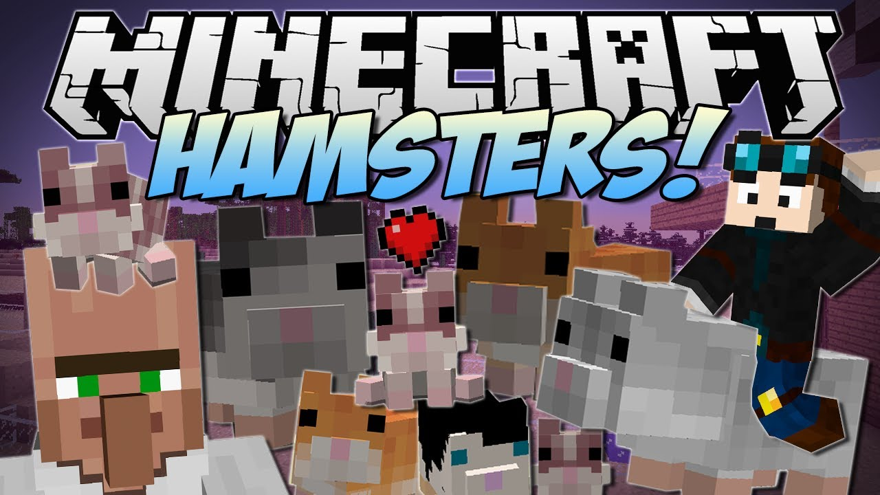 minecraft hamsters the great hamster race mod showcase youtube