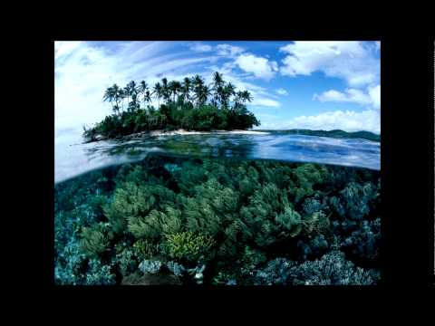 The Future Sound Of London - Papua New Guinea (High Contrast Mix)