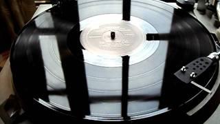 Gallops + Our Broken Garden + The Oscilation - Speak To Me/Breathe/On The Run (Vinilo)