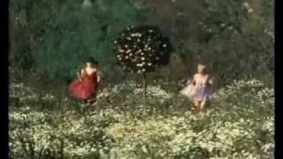 Strip-Teas - Daisies / Sedmikrásky soundtrack