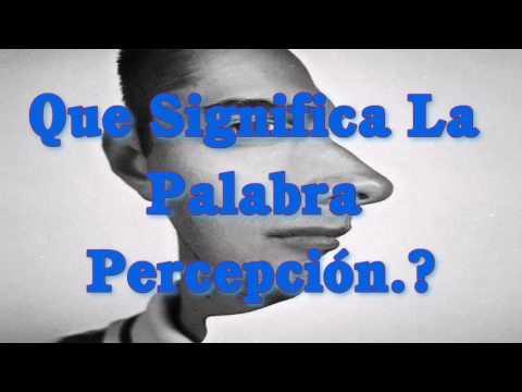 ¿.Que Significa La Percepción.?