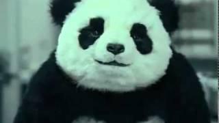 МЕГА СМЕШНАЯ РЕКЛАМА - Панда (Panda)