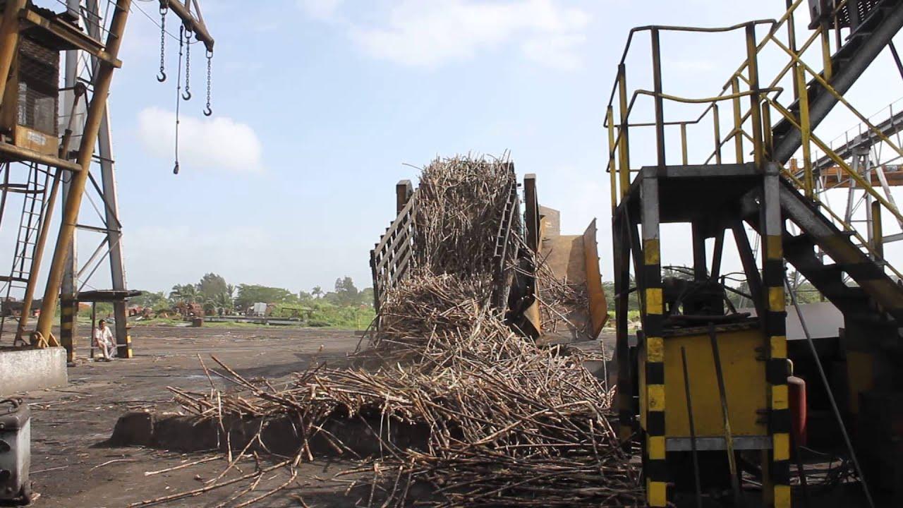 Sugar Cane Factory Tour