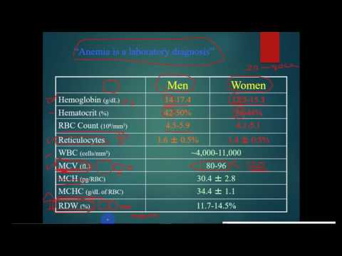 pathology -- dr. Tahseen -- Introduction to Anemia