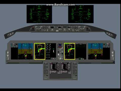 Crew Alerting System -  EICAS (Introduction)