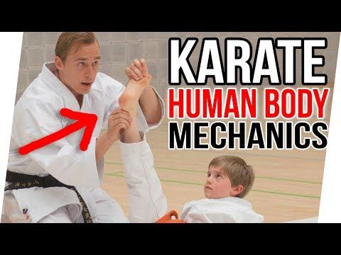 NEW KARATE SEMINAR   Biomechanics, Kumite Fear & Kicks — Jesse Enkamp