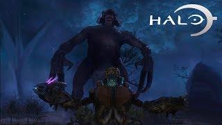 Las 5 criaturas más extrañas de Halo