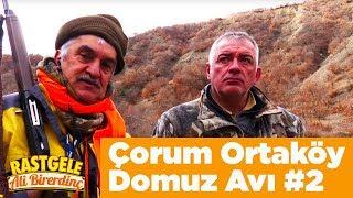 Çorum Ortaköy Domuz Avı 2 Rastgele Ali Birerdinç Yaban Tv  Wild Boar Hunting